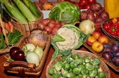 8507778-Autumn-Fruits-and-Vegetables