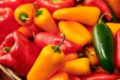 8507807-Autumn-Fruits-and-Vegtables