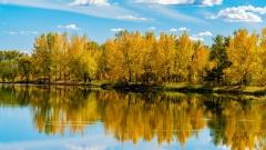 DSC6194-Autumn-Day-in-Carburn-Park