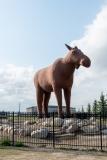 DSC_7171-Hornless-Moose-statue-in-Moosejaw-Saskatchewan