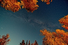 D8505151-Night-Sky-Emma-Lake-Saskatchewan-copy1