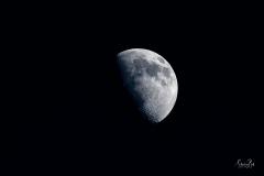 D8503180-Half-Moon_