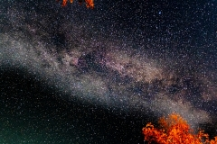 D850_5153-Night-Sky-Emma-Lake-Saskatchewan