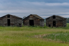 1_Abandoned-graineries-near-Grande-Prairie-Alberta_8502956