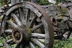 2019_8500544-_Wagon-Wheel