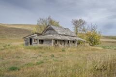 Abandoned homestead near Carbon, Alberta