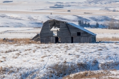 D850_7456-Abandoned-Barn-and-stable-near-Three-Hills-Alberta