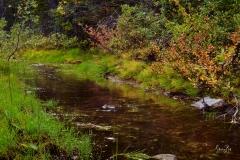 8507502-Stream-on-Smith-Dorian-Trail_