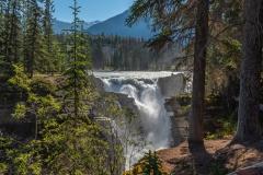 Athabasca-Falls-