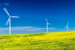 D8504848-Wind-Turbines-southern-Alberta-1