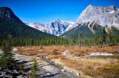 D8507933-Mount-Michael-and-Emerald-Peak-Emerald-Lake-Yoho-National-Park