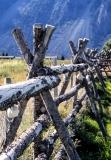 Old-log-fence-8500378