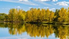 Pond-in-Carburn-Park-in-Autumn-2
