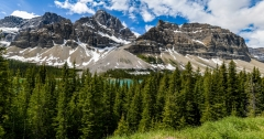 Bow Lake , Banff National Park 8502882