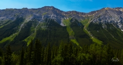 View-from-Grizzly-Creek
