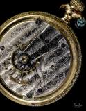 D8502248 Waltham Pocket Watch Mechanism