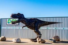 DSC_01721-tyrannosaurus-rex-Saskatoon-Saskatchewan